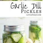 These easy to make Garlic Dill Pickles are perfect served on their own, as a side or straight on top of your favorite hamburger! Get the recipe at LittleFiggyFood.