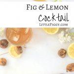 Fig & Lemon Cocktail tonic with lemon and dried fig garnish
