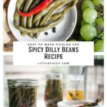 The Best Spicy DIlly Beans Recipe