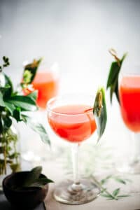 Easy to Make Drinks: The Mary Pickford Cocktail Recipe