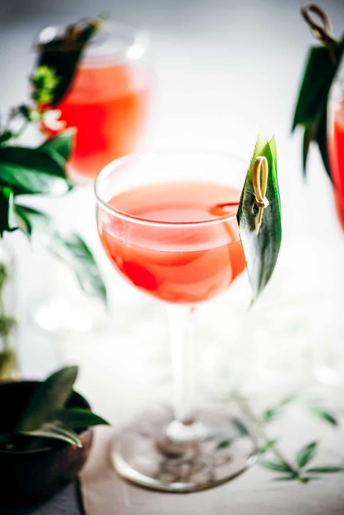 Rum cocktail drink