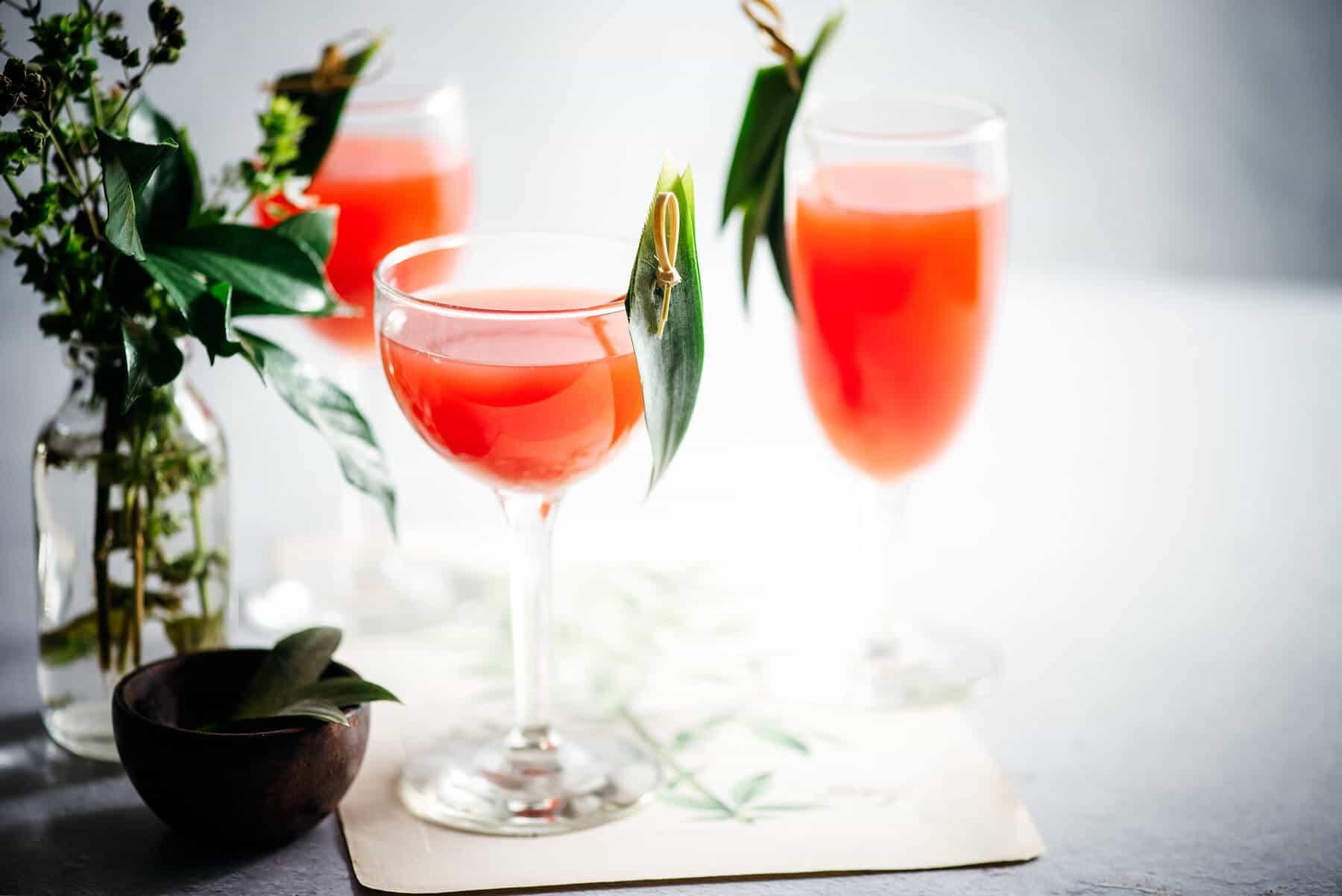 Serving summer cocktails
