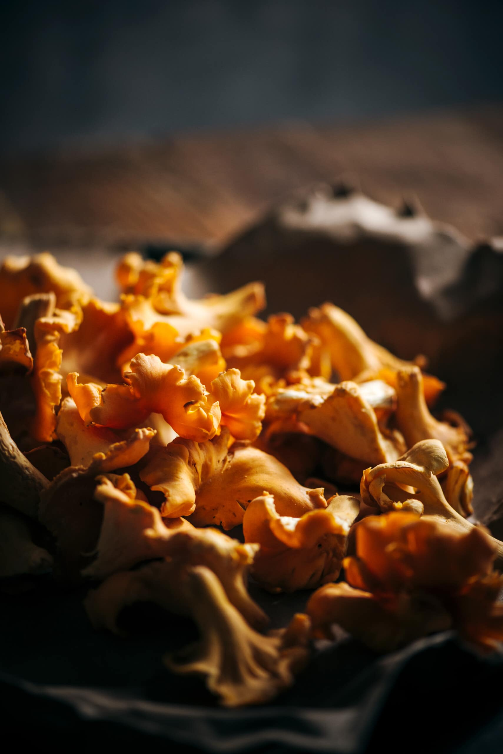 Wild food - Chanterelles Mushrooms